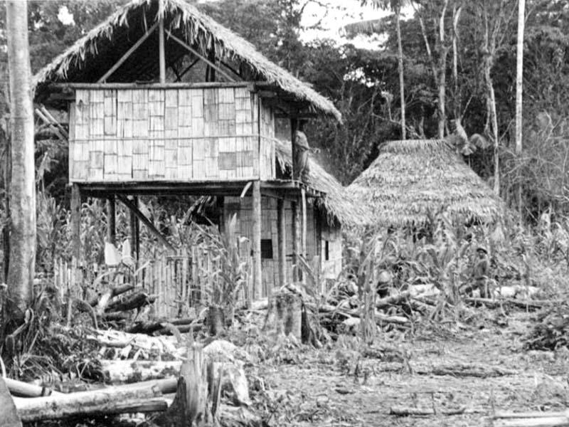 Historia Huamboya